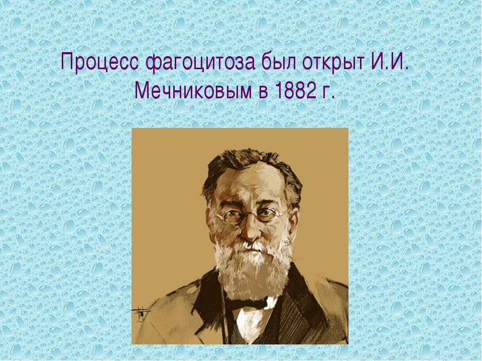 Процесс фагоцитоза был открыт И.И. Мечниковым в 1882 г.