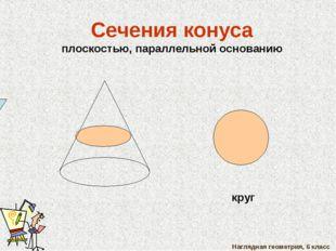 Наглядная геометрия, 6 класс Сечения конуса плоскостью, параллельной основани