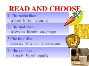 READ AND CHOOSE 1) The rabbit likes ... a)ham b)fish 2) The bird likes … a)sw