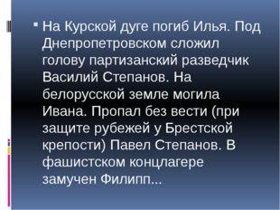 На Курской дуге погиб Илья. Под Днепропетровском сложил голову партизанский