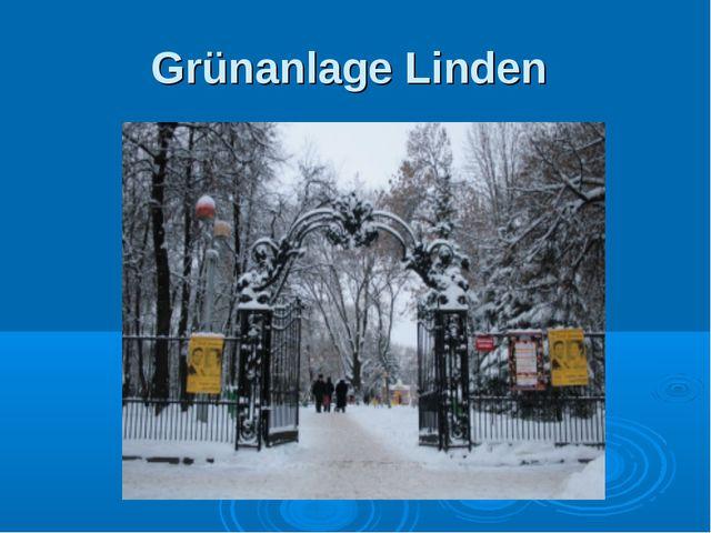 Grünanlage Linden