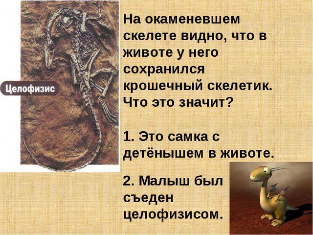На окаменевшем скелете видно, что в животе у него сохранился крошечный скелет...