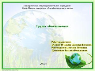 Муниципальное общеобразовательное учреждение Ново –Павловская средняя общеобр