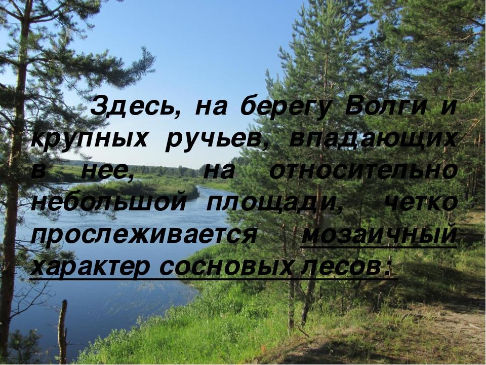 Здесь, на берегу Волги и крупных ручьев, впадающих в нее, на относительно не...