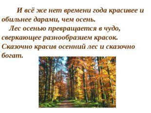 И всё же нет времени года красивее и обильнее дарами, чем осень. Лес осень