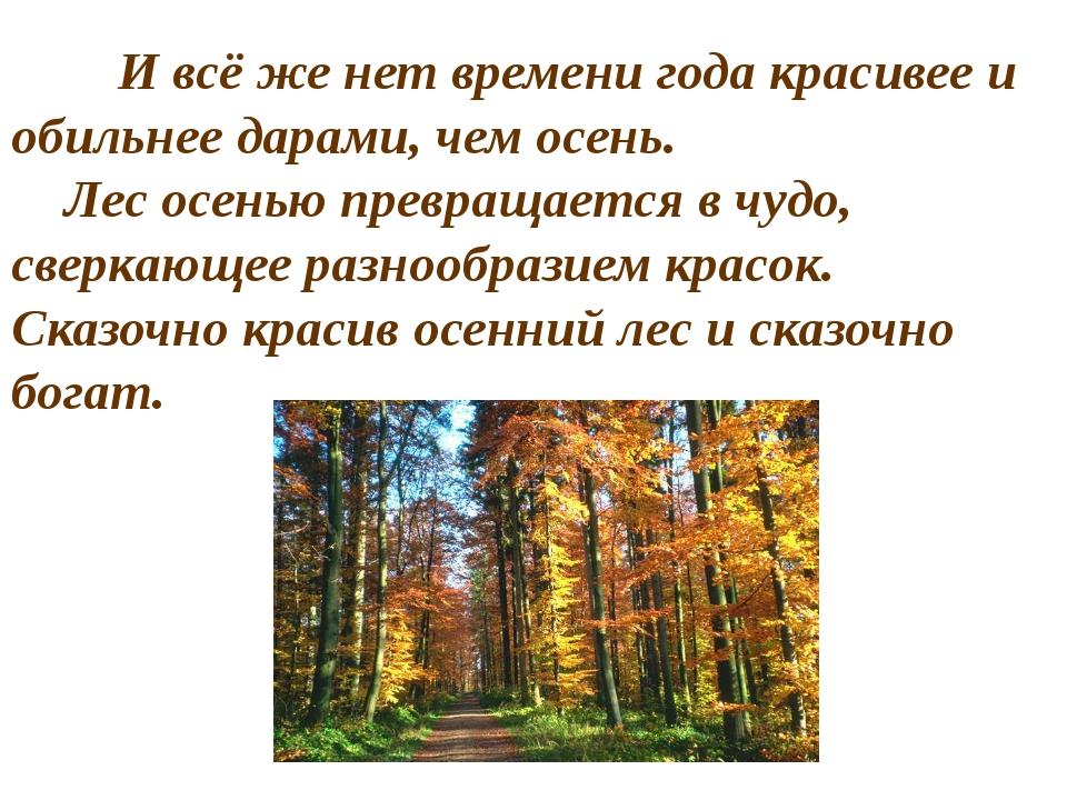 И всё же нет времени года красивее и обильнее дарами, чем осень. Лес осень...
