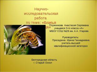 Научно-исследовательская работа по теме: «Божья угодница» Плужникова Анастас