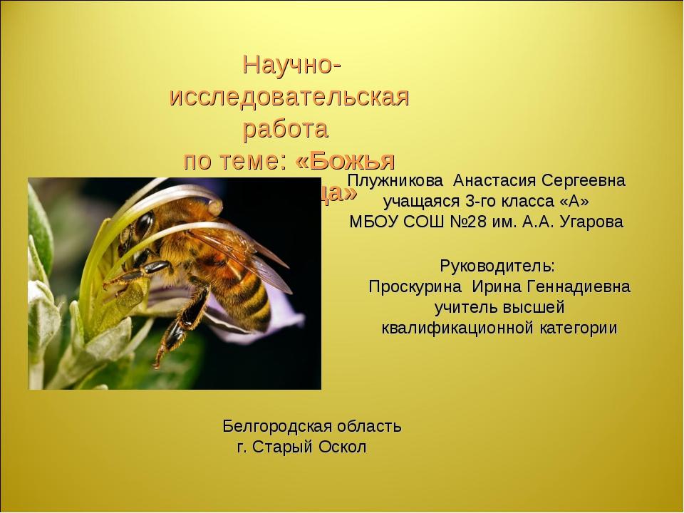 Научно-исследовательская работа по теме: «Божья угодница» Плужникова Анастас...