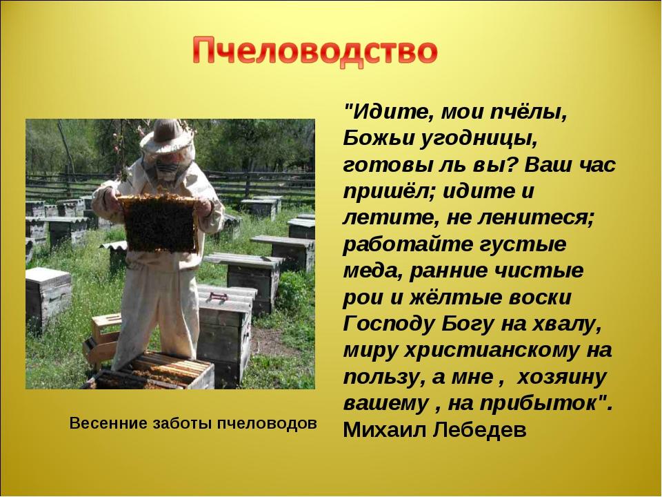 """Весенние заботы пчеловодов """"Идите, мои пчёлы, Божьи угодницы, готовы ль вы?..."""