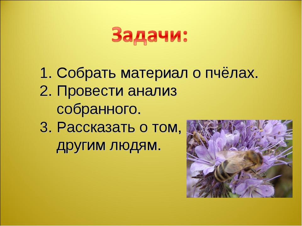 Собрать материал о пчёлах. Провести анализ собранного. Рассказать о том, что...