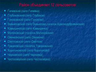 Район объединяет 12 сельсоветов: Гилевский (село Гилевка) Глубоковский (село
