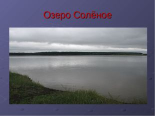 Озеро Солёное
