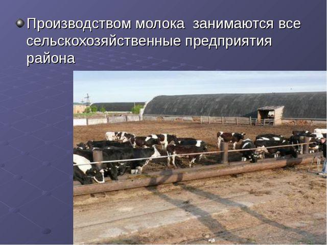 Производством молока занимаются все сельскохозяйственные предприятия района