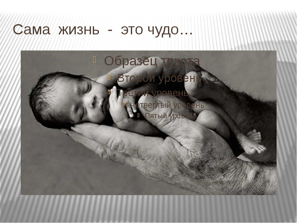Сама жизнь - это чудо…