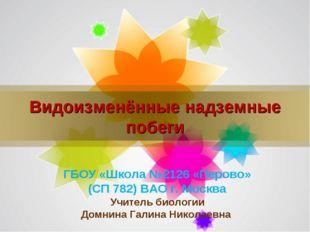 Видоизменённые надземные побеги ГБОУ «Школа №2126 «Перово» (СП 782) ВАО г. Мо