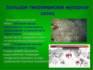 Большое тихоокеанское мусорное пятно Большое тихоокеанское пятно – скопление