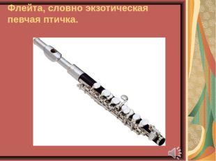 Флейта, словно экзотическая певчая птичка.