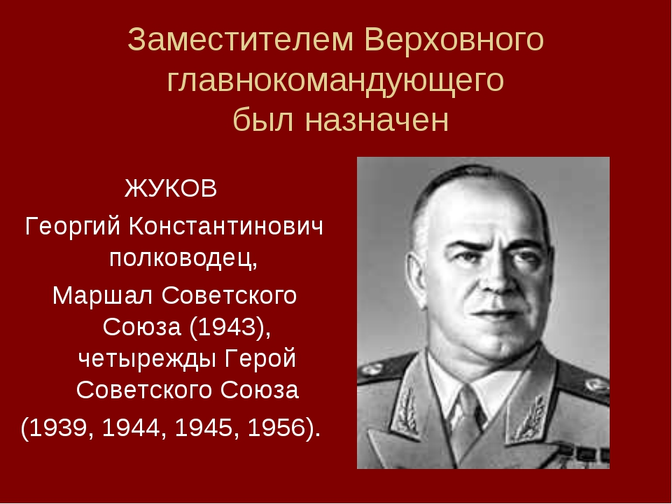 Заместителем Верховного главнокомандующего был назначен ЖУКОВ Георгий Констан...