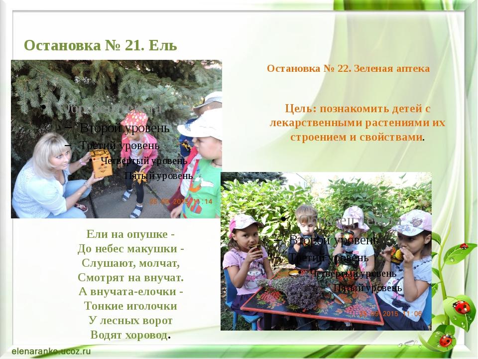 Цель: познакомить детей с лекарственными растениями их строением и свойствами...