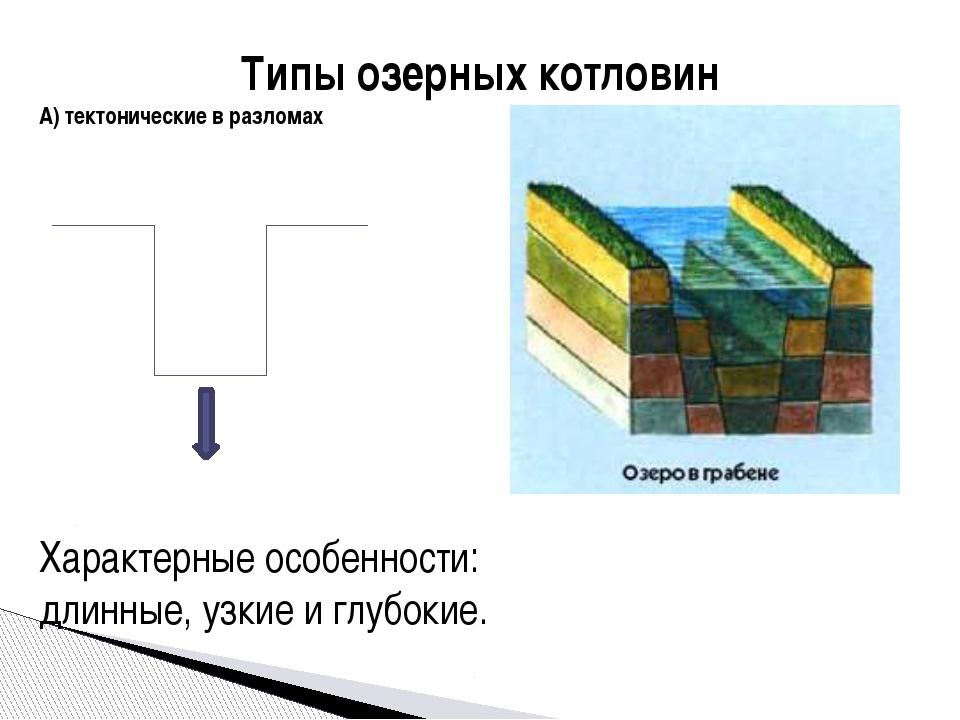 Типы озерных котловин А) тектонические в разломах Характерные особенности: дл...