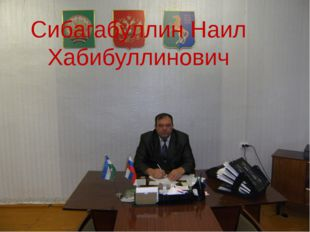 Сибагабуллин Наил Хабибуллинович