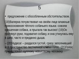 5 предложение с обособленным обстоятельством. (18)Валерка почувствовал на сво