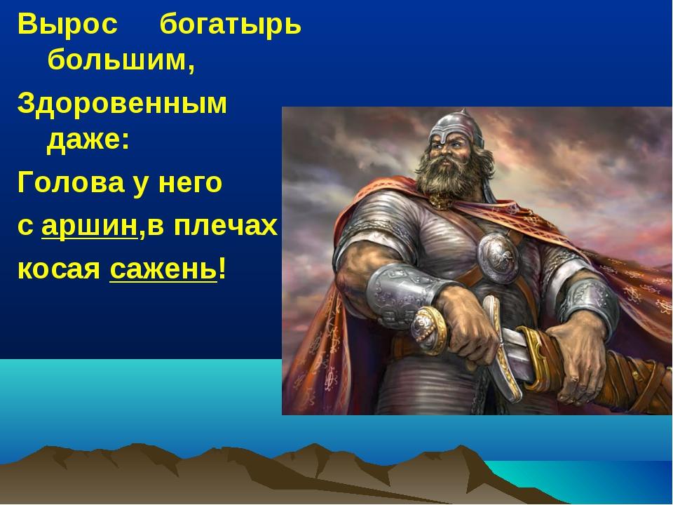 Вырос богатырь большим, Здоровенным даже: Голова у него с аршин,в плечах коса...