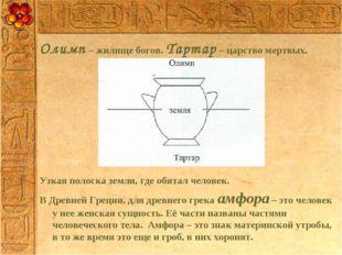 Олимп – жилище богов. Тартар – царство мертвых. Узкая полоска земли, где обит
