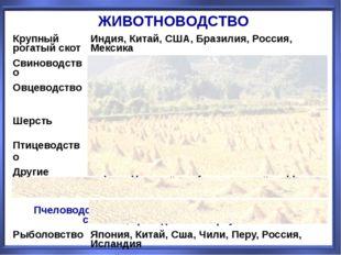 ЖИВОТНОВОДСТВО Крупный рогатый скот Индия, Китай, США, Бразилия, Россия, Мекс