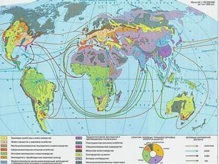 Высокоспециализированноесельское хозяйство: растениеводство и животноводство