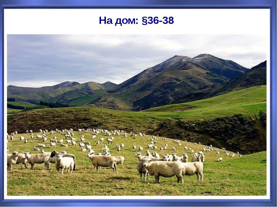 На дом: §36-38