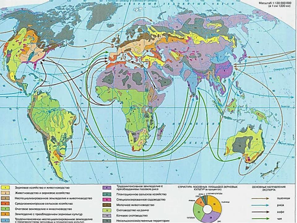 Высокоспециализированноесельское хозяйство: растениеводство и животноводство...