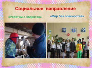 Социальное направление «Ребятам о зверятах» «Мир без опасностей» scul32.ucoz.ru