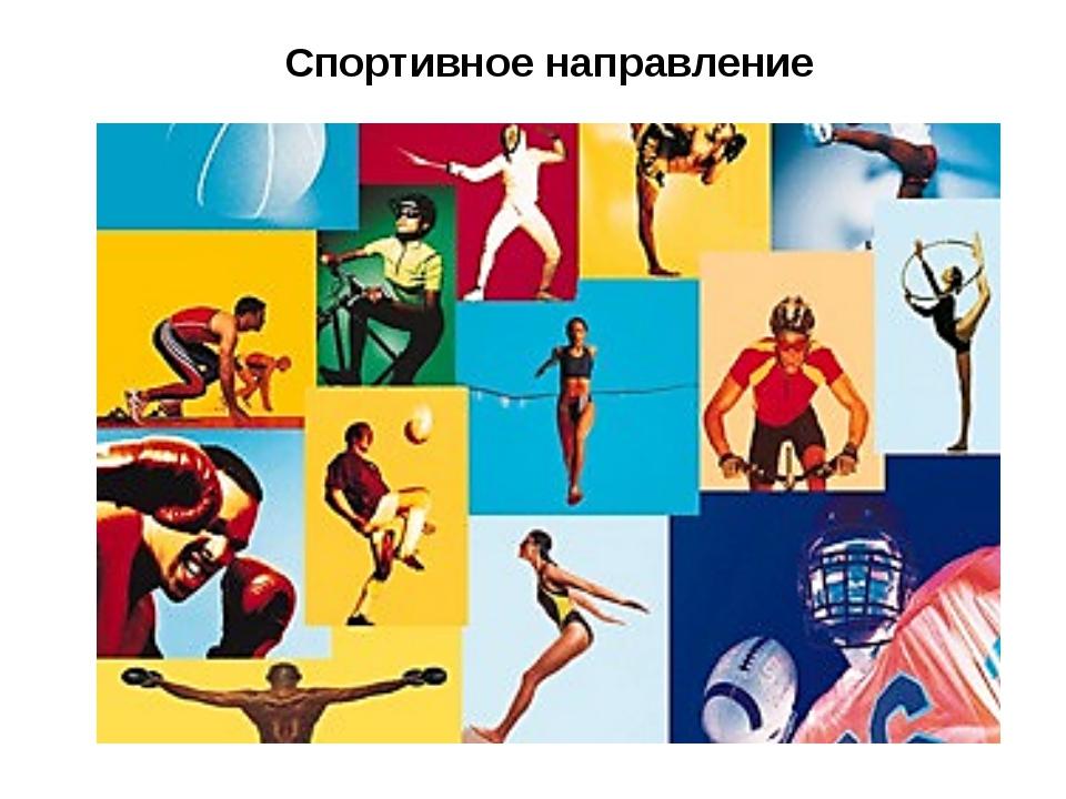 Спортивное направление Спортивное направление физической культуры включает в...