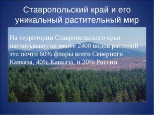 Ставропольский край и его уникальный растительный мир На территории Ставропол