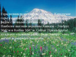 Горы возникли миллионы лет назад. Кавказские горы известны своей величавой кр