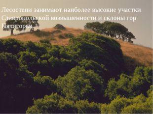 Лесостепи занимают наиболее высокие участки Ставропольской возвышенности и ск