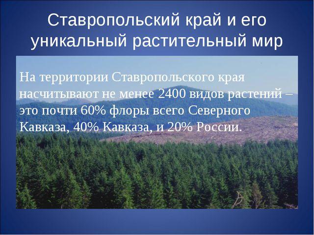 Ставропольский край и его уникальный растительный мир На территории Ставропол...