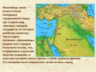 Финикийцы жили на восточном побережье Средиземного моря, где создали ряд торг