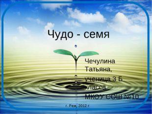 Чудо - семя Чечулина Татьяна, ученица 3 Б класса МКОУ СОШ №10 г. Реж, 2012 г