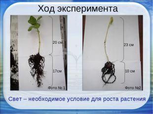 Ход эксперимента Фото № 1 Фото №2 Свет – необходимое условие для роста растен