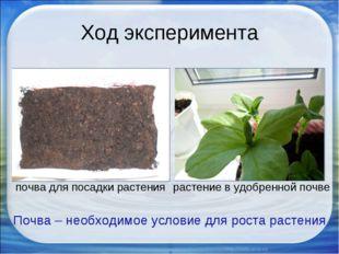 Ход эксперимента Почва – необходимое условие для роста растения почва для пос