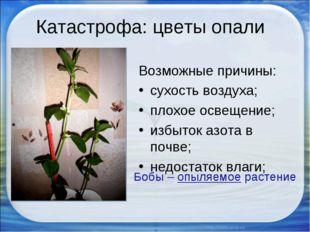 Катастрофа: цветы опали Возможные причины: сухость воздуха; плохое освещение;