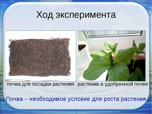 Ход эксперимента Почва – необходимое условие для роста растения почва для пос...
