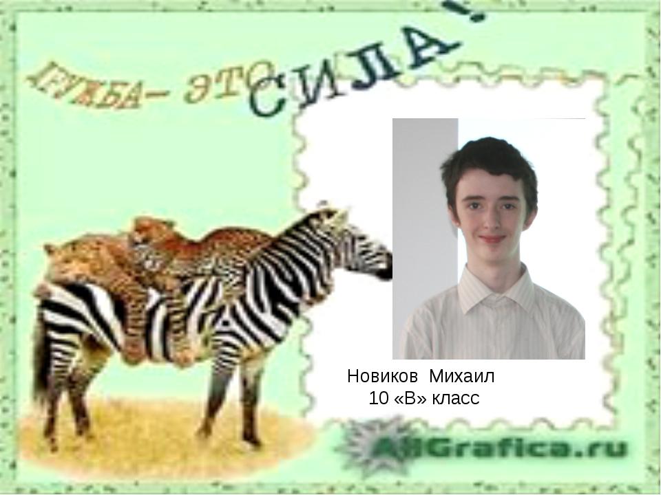 Новиков Михаил 10 «В» класс