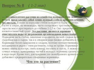 Вопрос № 8 ( 1-2 мин) — Это многолетнее растение из семейства осоковых. Оно и