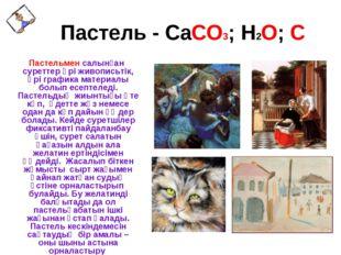 Пастель - CaCO3; H2O; C Пастельмен салынған суреттер әрі живописьтік, әрі гр