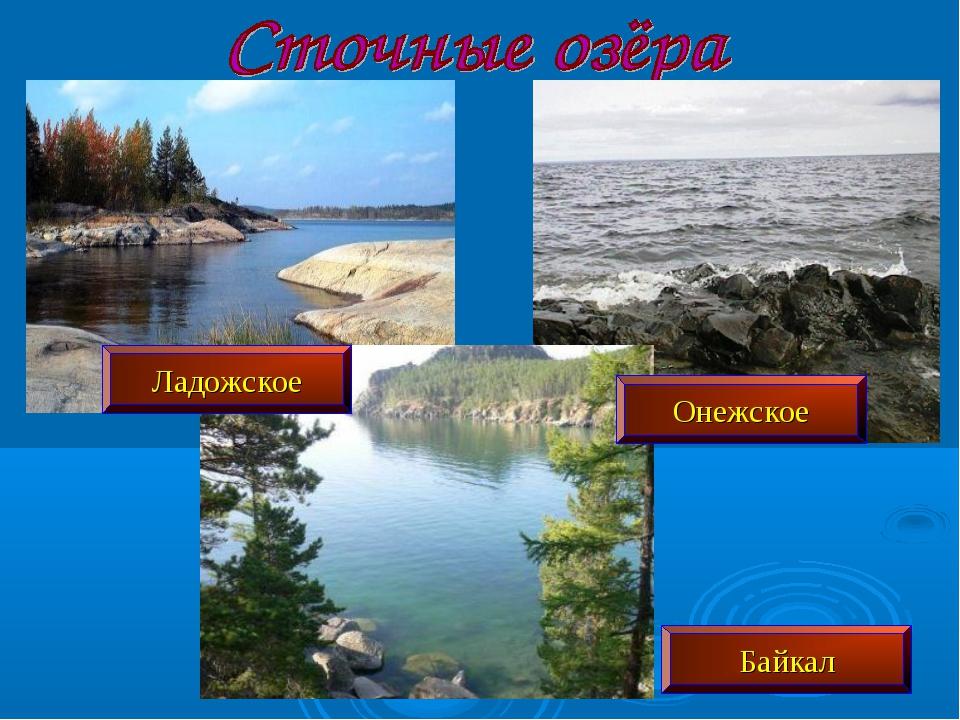 Ладожское Онежское Байкал