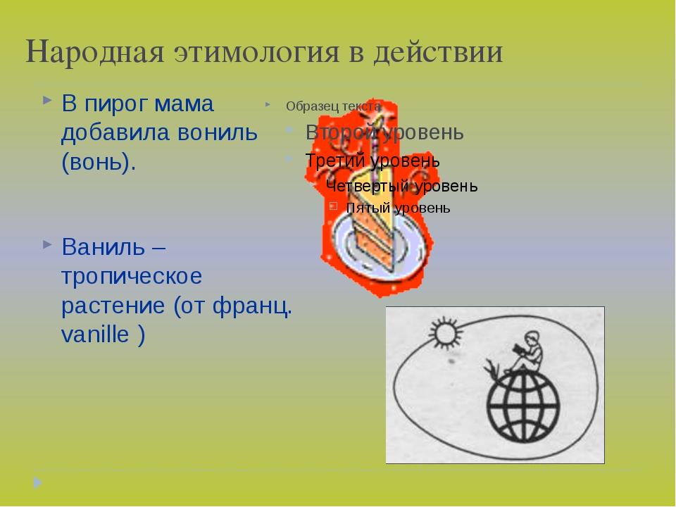 Народная этимология в действии В пирог мама добавила вониль (вонь). Ваниль –...