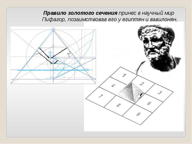 Правило золотого сеченияпринес в научный мир Пифагор, позаимствовав его у е...